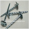 hot dipped galvanized umbrella head roofing nails