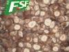 IQF shiitake