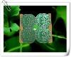 G24 energy saving lamp plastic