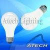 A19 Incandescent Lamp