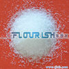 Sucrose anhydrous pharmaceutical grade 99%