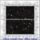Black Galaxy Granite Flooring