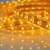 SMD5050 flexible strip orange-yellow