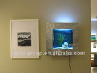 Wall hanging fish tanks