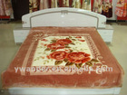 classic and fashion polyester blanket