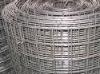 galvnaized welded wire mesh