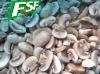grade A frozen champignon mushroom