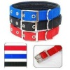 E057 Soft Leather Lining Polypropylene Pet Foam Collar Material Comfort and Durability Dog Collar 1 pc/lot Free Shippping