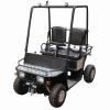 110cc CVT Mini Utility Vehicle ( TPMUV-110A1 )