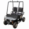 110cc CVT Mini Utility Vehicle ( TPMUV-110A1 )