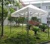 2m*3m Canopy