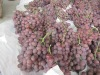 Fresh Yunnan Red globe grapes