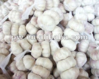 sell chinese normal white garlic