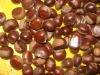 Organic Fresh Chestnut