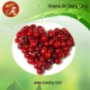 GMP factory supply 25% UV anthocyanins of Cranberry Extract