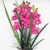 pink silk orchid flower