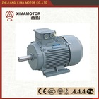 y series high start torque induction motors with outstanding performance