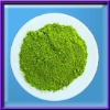 Instant Green Tea Extract for Beverage