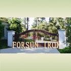 iron auto sliding gate FSM-067
