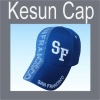 3D embroidered promotional cap/hat