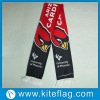 European Football Fan Scarf