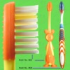 anti-slip handle household toothbrush