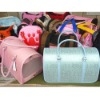 Fashion Pet Carrier Bag