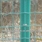 High quality Galvanized Holland wire mesh/Euro Fence/wave wire mesh