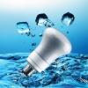 R63 Energy Saving Light Bulb