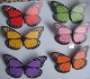 Magnetic butterfly,beautiful magnetic butterly