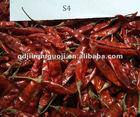 Dry chili/new crop chilli
