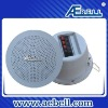 public address system in Ceiling Speaker