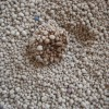 new improved clumping bentonite cat sand