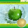 100% Natural Apple powder for drink material