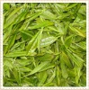natural green tea extract with egcg