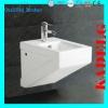 White Rectangular WC Bidet Toilet