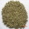 pure Arabica green coffee bean/low price from China manufactory