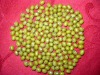 China good quality green mung beans