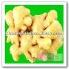 2012 china fresh ginger