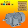 (IEC Standar)Y Series Three Phase Asynchronous Motor