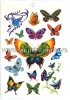 Beautiful Butterfly Tattoo Sticker