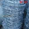 Best price Galvanized barbed Wire Factory