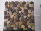 Mixed Pebble Mosaic