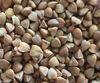Buckwheat, Hulled & Roasted, TOP3 Buckwheat Exporters.