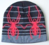 fashion knitting hat for winter season