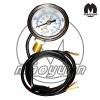 cng pressure gauges(BY)