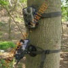 GPRS Hunting Camera (CE & FCC & ROHS, model: 5210M)