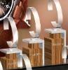 Mydarb - acrylic watch display