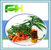 Natural Seabuckthorn Seed Oil
