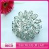 2012 crystal brooch